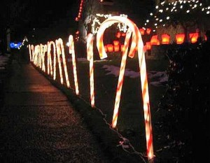 Holiday Lights in Candy Cane Lane