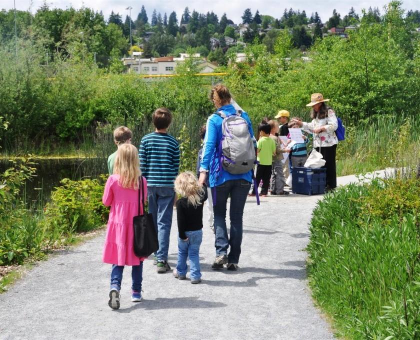 Wetland Walks